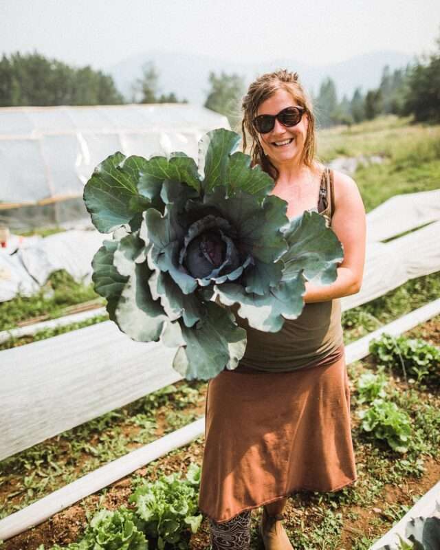 What's in season for March? Grab some tomatoes and toss it in your salad or some cabbage to season and roast with onions for an easy side dish! 🥬  Visit our bio for a full listing of what you might discover at a farmers' market near you!  photo: #BCFarmersMarketTrail &  Thomas Nowaczynski @happyhillsfarmrossland