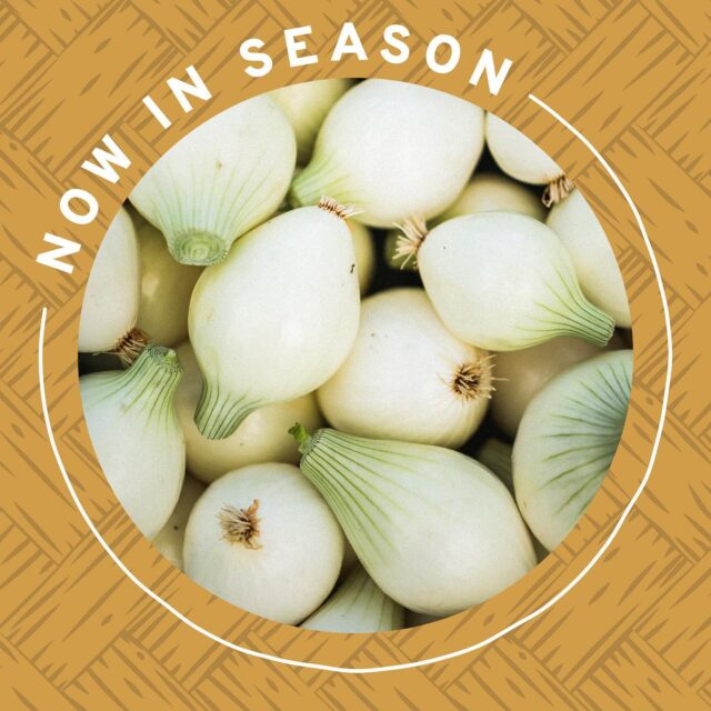 🥬 In case you haven't seen what's in season this month, this is a reminder that we can help you prep for your next farmers' market trip!   Just head to our website in our bio to see the list by region! 👨‍🌾  #farmersmarket #farmersmarkets #buylocal #localgrown #bcgrown #BCfarmersmarkets