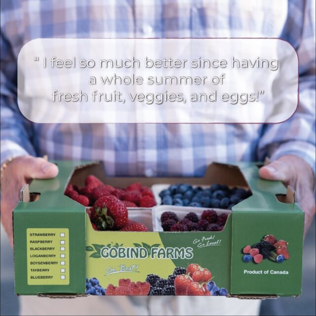 """What do you like best about the BC Nutrition Coupon Program? From one of our program participants: """"I feel so much better since having a whole summer of fresh fruit, veggies, and eggs! I also socialized much more, having a reason to get out to the market.""""  We are grateful to our key funders, the Province of British Columbia and Provincial Health Services Authority, the @columbiabasintrust, Fresh to Families, and our growing community donors, for making this a reality. 😌  photo: #BCFarmersmarkettrail + webmeister Bud #FarmersMarketsCount #LoveMyMarket #WhyFarmersMarkets #FarmersMarkets #ShopLocal #BCFarmersMarket #BCFarmersMarkets #couponprogram"""